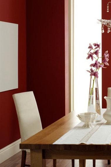 10 couleurs salle a manger genereuses
