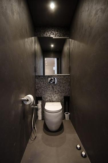 Dco Toilettes Grise  Peinture et Dco WC avec du gris