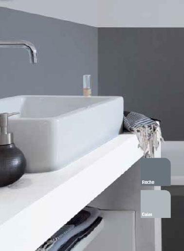 Peinture pour salle de bain gris souris et anthracite V33