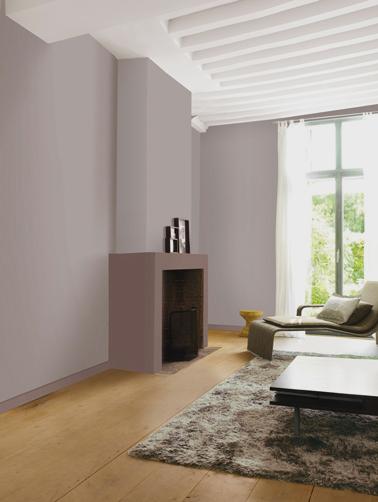 peinture salon taupe poudre sur mur couleur santal sur coffrage cheminee