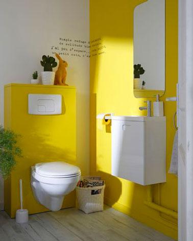 Quelle peinture WC choisir sans faire derreur  DecoCool