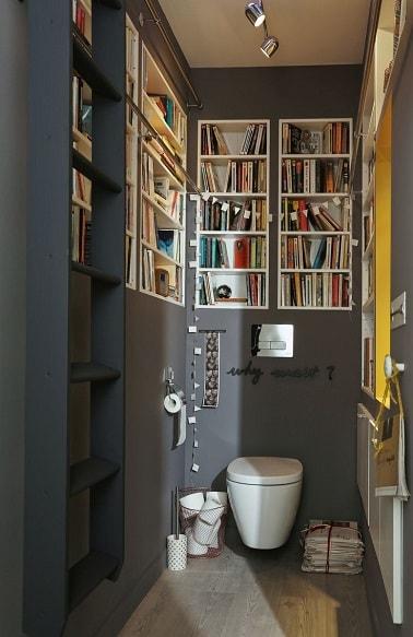 Une dco de WC peints en gris avec niches bibliothque