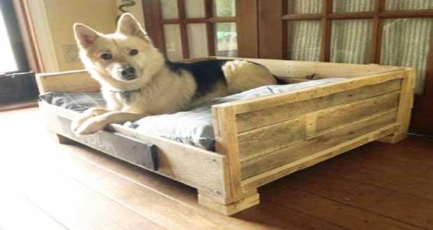 Lits pour chien en palette bois  raliser soimme