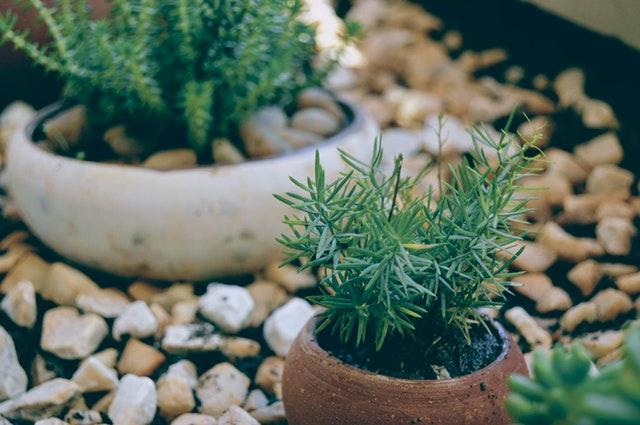 decoration jardin quels objets pour