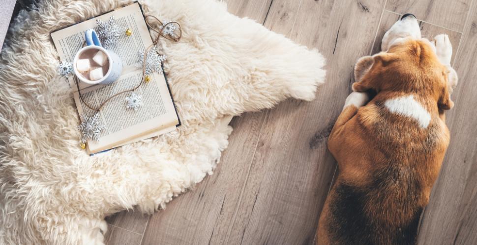 un tapis en peau de mouton