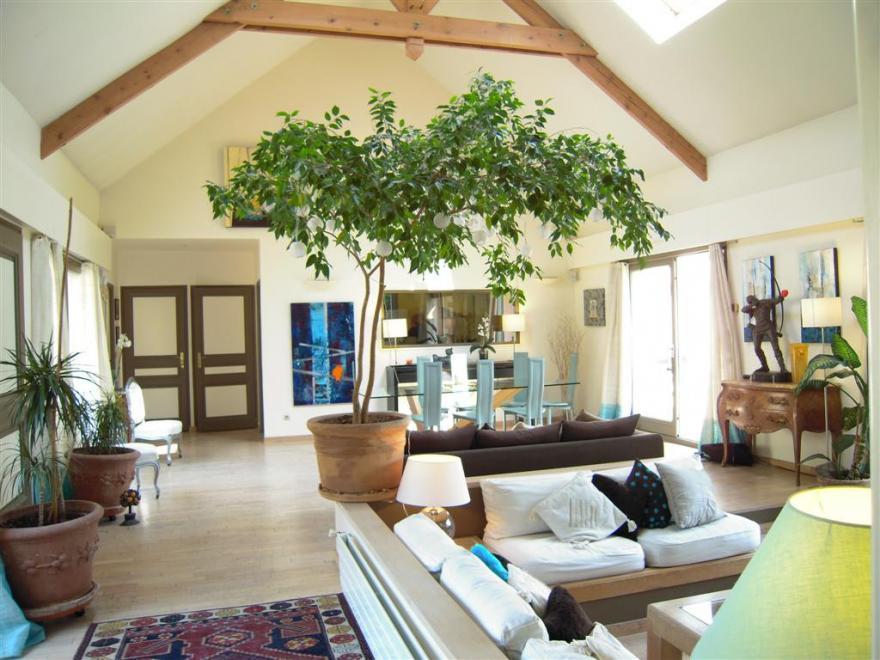 salon style maison