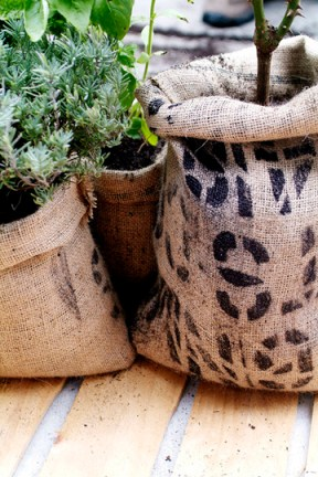 How to make cofee bag planter pots Apartment therapy via Nat & Nature