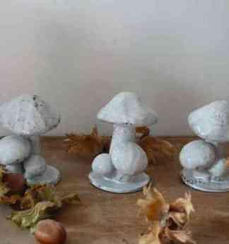 Recolte-d-automne Reves-d-argile 2013
