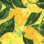 lemon fabric