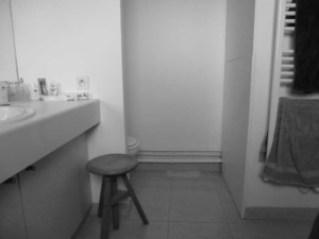15-sdb-avant-travaux-vasque-wc