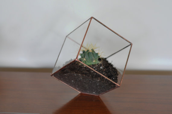 { Today I ♥ } Les terrariums... | www.decocrush.fr