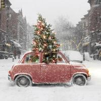 25 sapins de Noël joliment décorés pour s'inspirer !