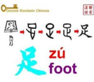 Pictogram of 足 foot