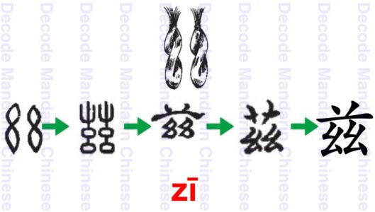 Component 兹 two strands of twisted silk