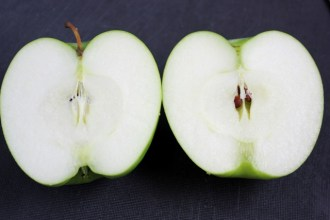 Freshly sliced Granny Smith Apple