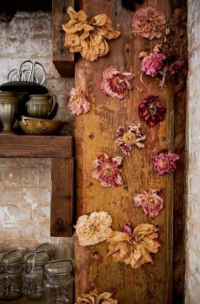 Decofairy_Autumn images