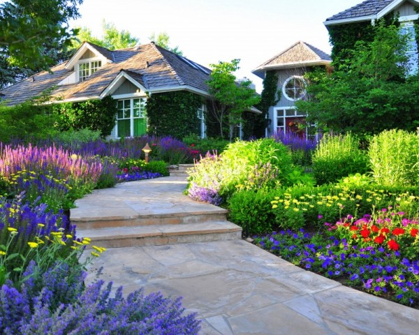 denver landscape design compliment