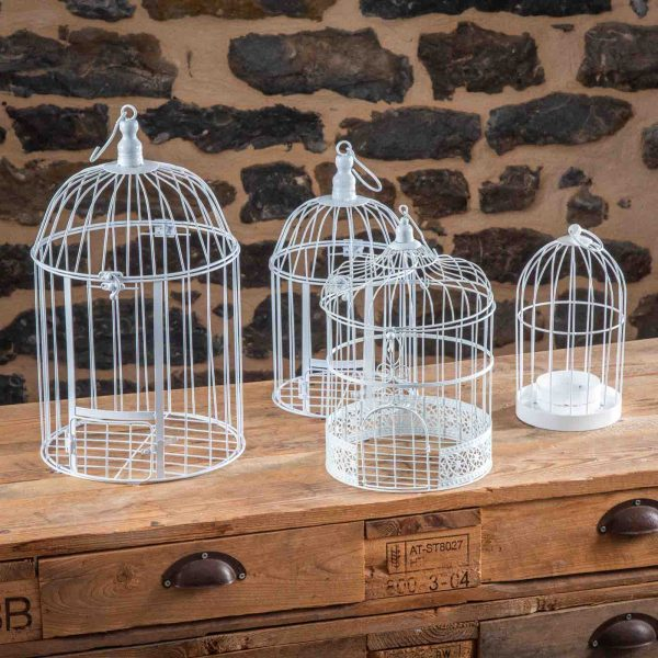 location-cage-a-oiseaux-A