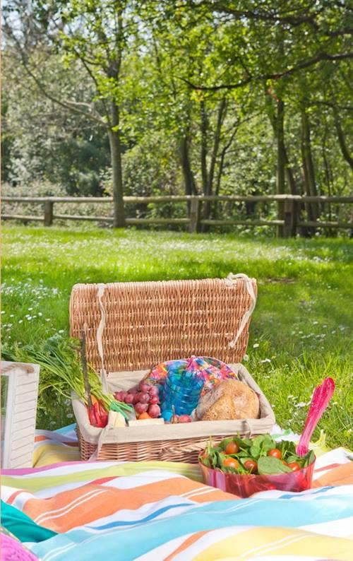 Idea de decoración para exteriores ¡el picnic es tendencia! 2
