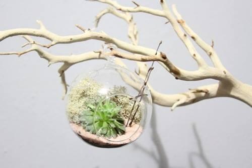 Ideas para decorar con ramas secas decomanitas - Ramas de arbol para decoracion ...