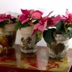 Arreglos de Navidad con flor de pascua de estilo vintage 5