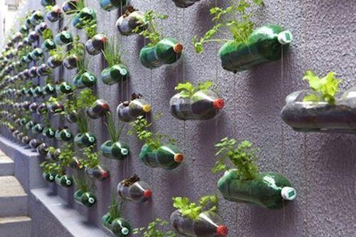 ideas para reciclar en casa (y hacer macetas con botellas, latas y