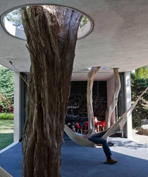 Árboles secos para decorar interiores de casas 4