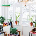 Tendencia jungla urbana: ¡el último grito en diseño interior!