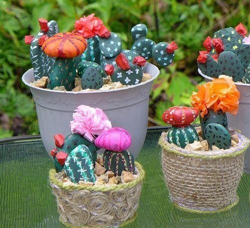 Los cactus falsos que no necesitan riego pero decoran un montón... 2