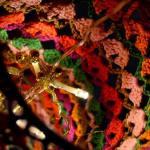 Labores de ganchillo preciosa lampara de crochet 2