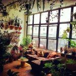 ¡Mi casa, mi selva! 20 ideas para decorar con plantas de interior 11