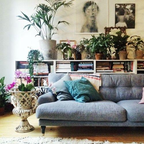 ¡Mi casa, mi selva! 20 ideas para decorar con plantas de interior 6