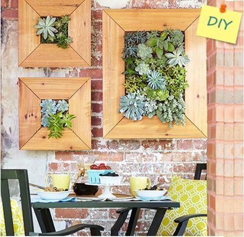 Decorar terrazas pequeñas mini jardin vertical de plantas crasas 2