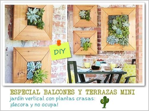 decorar terrazas pequeñas mini jardín vertical de plantas crasas 2