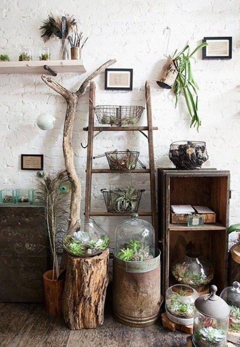 Los 25 rincones con plantas de interior m s bellos de for Plantas para decoracion de interiores