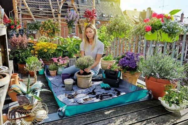 Cómo situar los soportes para jardines en macetas