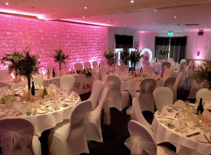 Flower Wall With Up Lighting Hire
