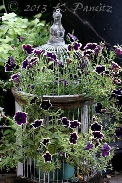Unique Vintage Decor with Beautiful Flower Arrangements and Birdcages
