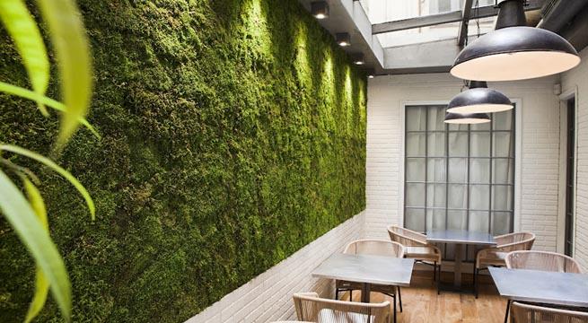 Jardines verticales para la pared