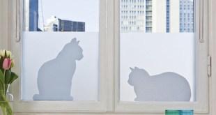 Adhesivos para ventanas