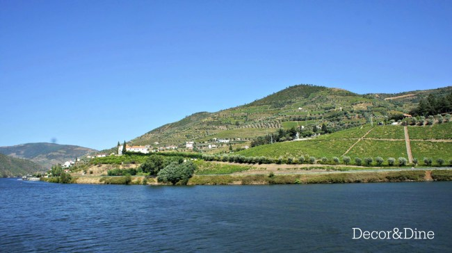 douro valley. portugal