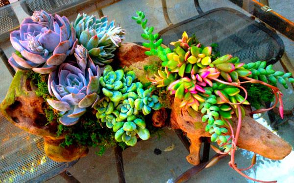 Ideas de Macetas y Jardineras originales recicladas