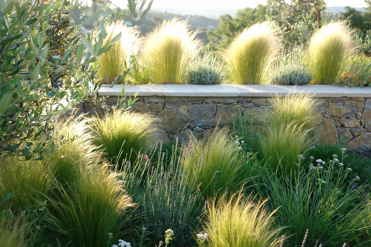 idee jardin avec graminees