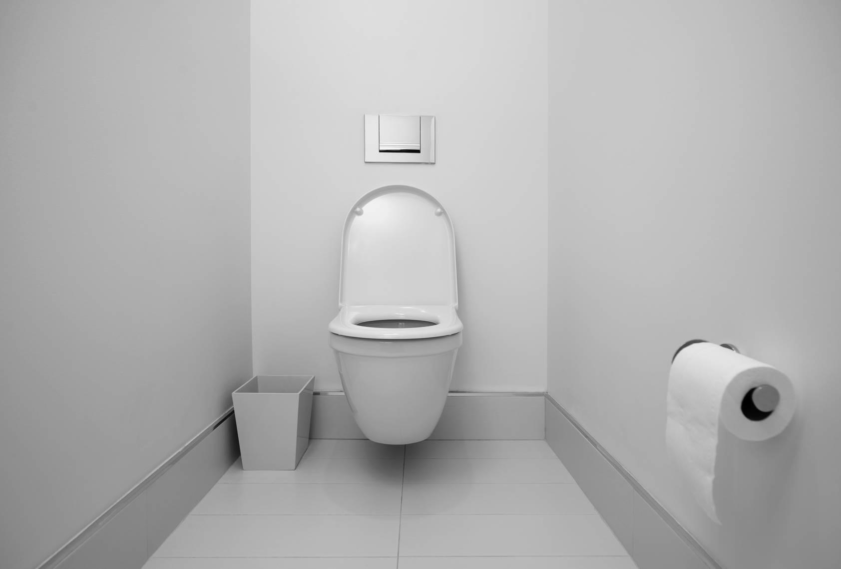 Comment Rparer Des Toilettes Blog Decoration Maison