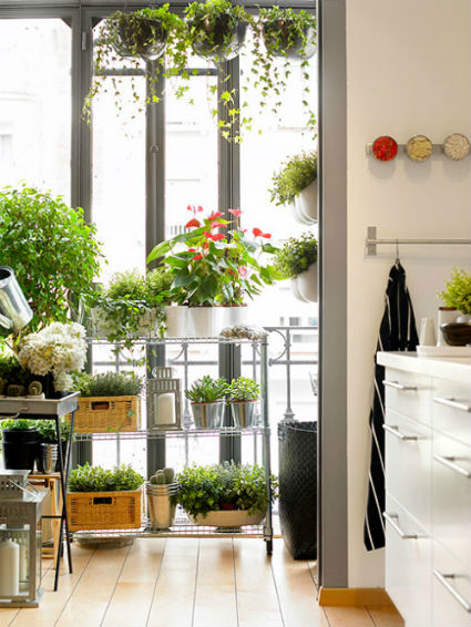 Detalles naturales para decorar tu cocina