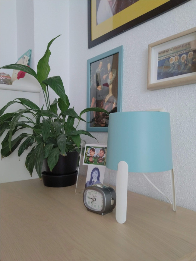 mesilla con fotos y una planta