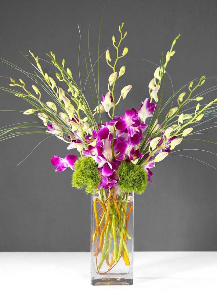 Orquídea Dendrobium: uma das principais características dessa orquídea são as várias pequenas flores que nascem em um único ramo