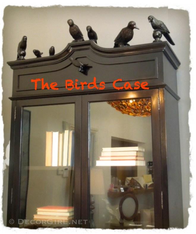 Birds on a Bookcase