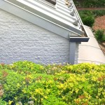 High Level Gardening: Living With A Live Roof