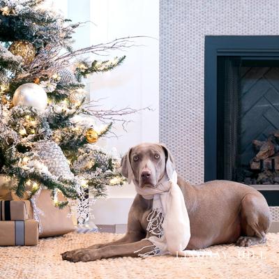 lindsay-hill-interiors-christmas-tour-sq